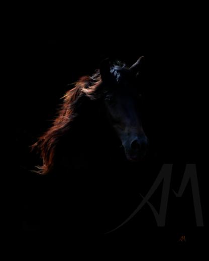 Black horse digital art