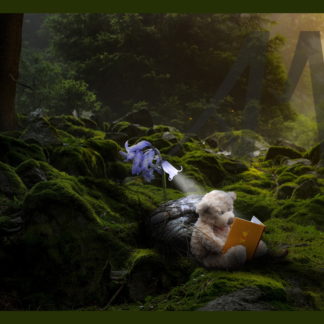 Fantasy with toy bear reading in woods